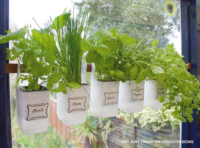 recycled herbs garden
