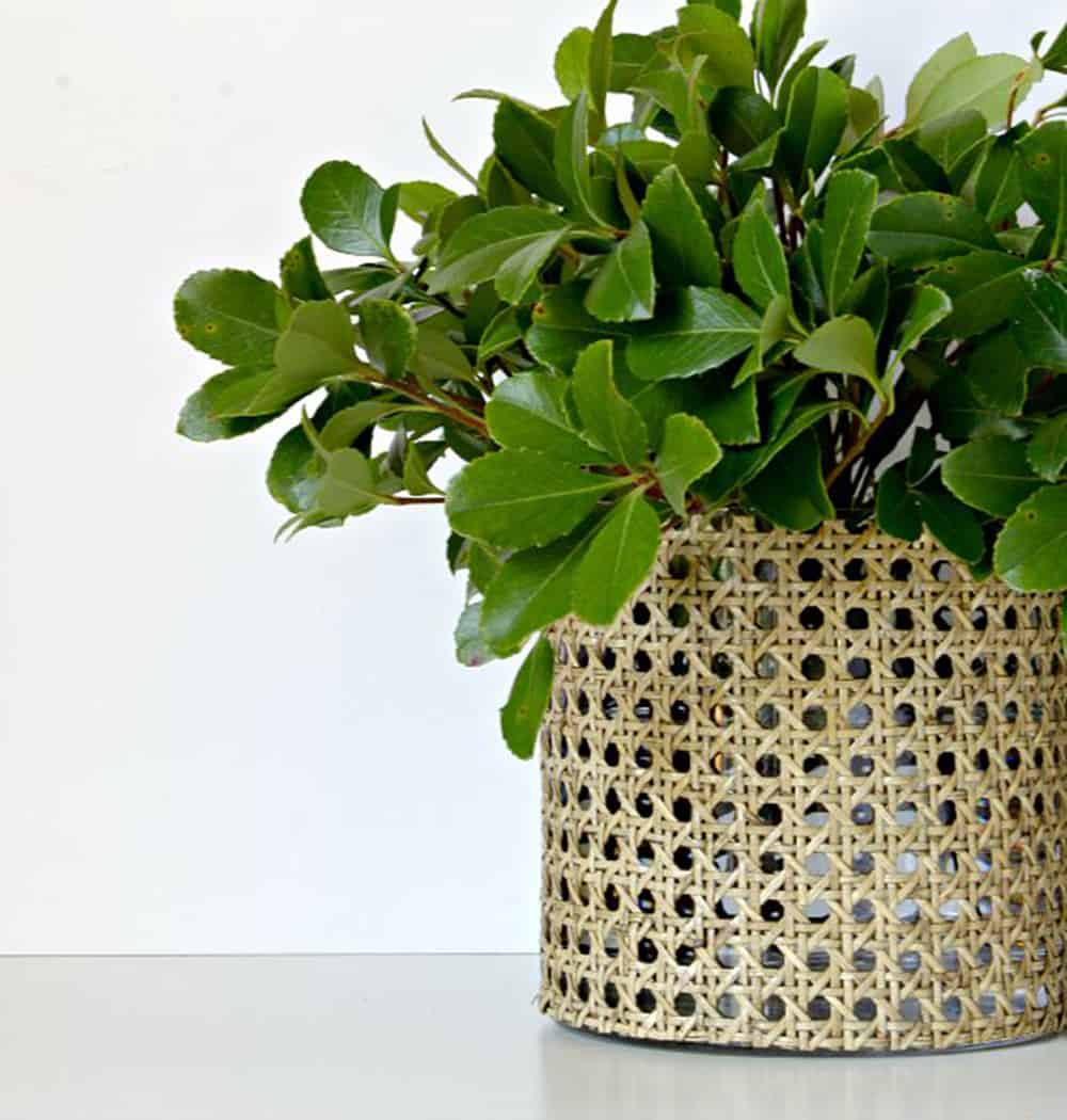 How to DIY with rattan?