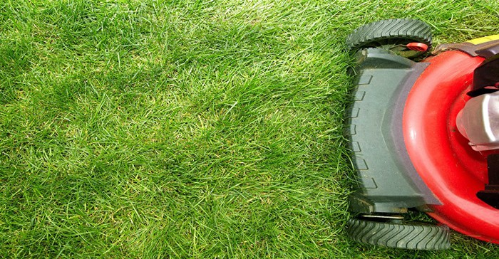 Top 3 Tips For Mowing Your Lawn