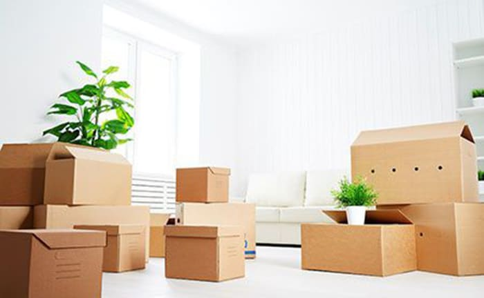 The Pros and Cons of Moving on Your Own vs Hiring Professional Movers