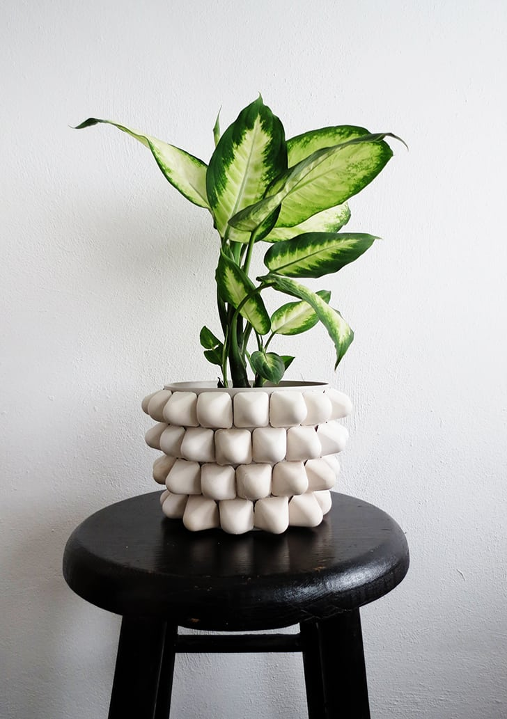 How to make a spiky planter