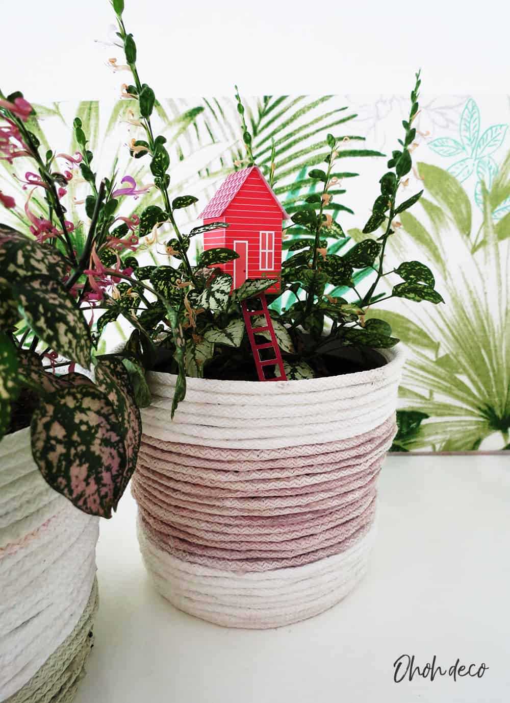 place the paper house template in a planter