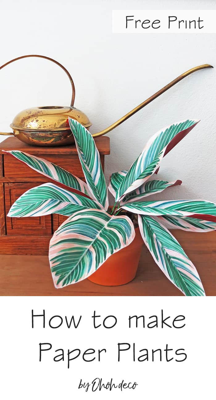 How to make DIY Paper Plants Tricolor Ginger