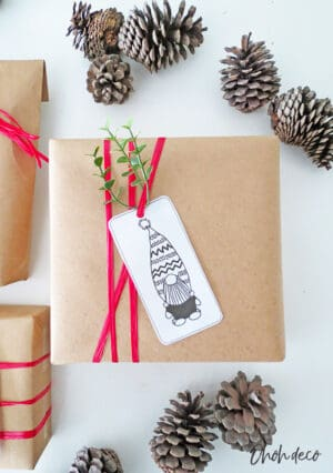 gift wrap with freebie tag