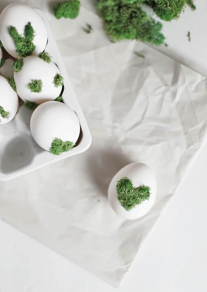 diy moss egg