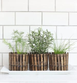 clothes pin planters