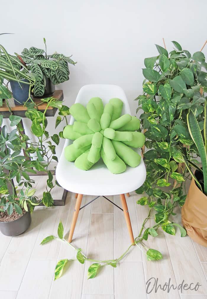 succulent pillow diy