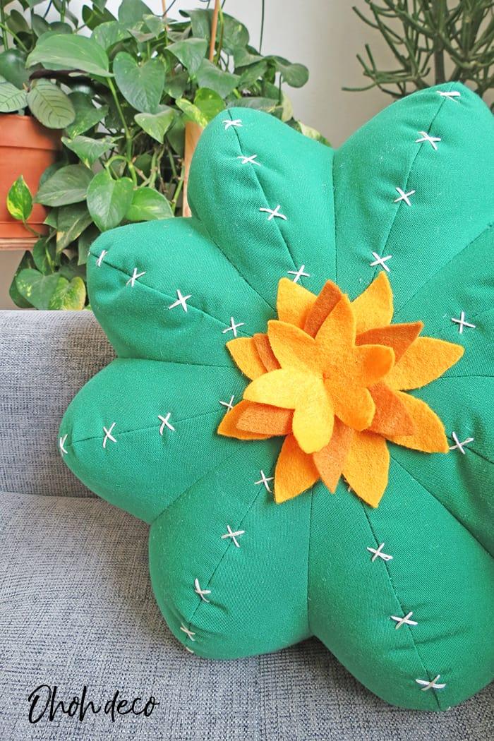 cactus pillow close up
